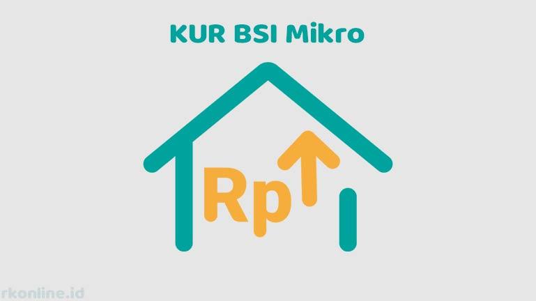 KUR BSI Mikro